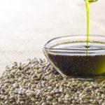 Olio di canapa: effetti benefici per la funzione articolare