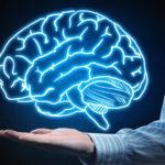 Come avere un cervello più sano e ricordi migliori