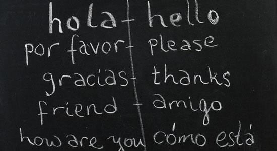 Come funziona il bilinguismo