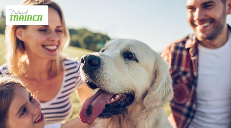 Natural Trainer cane con famiglia