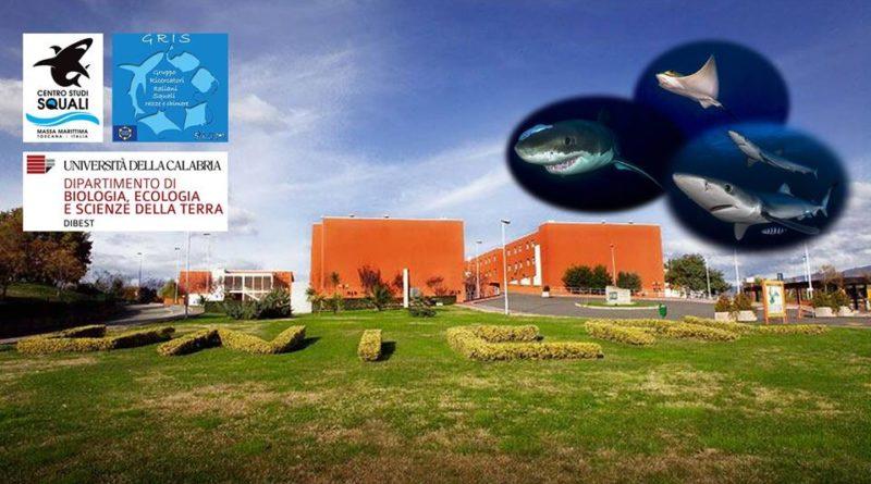 European Elasmobranch Association Meeting 2019
