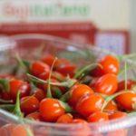 La nutraceutica del food: cibi funzionali e tecniche di cucina innovativa