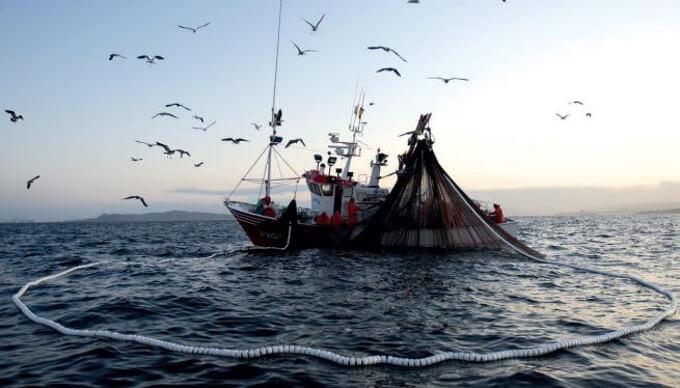 La pesca elettrica
