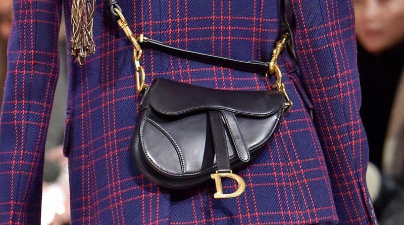 la Saddle Bag di Dior