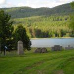 Värmland promuove uno sfruttamento forestale sostenibile e innovativo