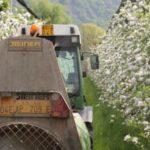 Fitosanitari: nuove regole per una maggiore sostenibilità