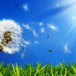 Allergie: combatterle con le pulizie adeguate
