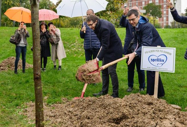 Mellin - nuovi alberi per le famiglie di Torino