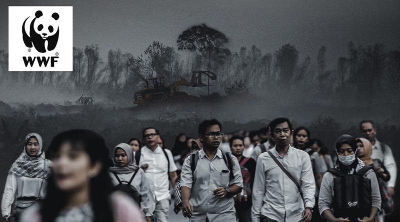 pandemie e perdita di natura