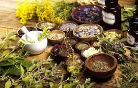 erbe curative contro la dispepsia