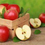 Mele: frutti gustosi, versatili e buoni per la salute