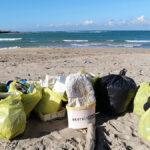 Archeoplastica: il museo degli antichi rifiuti spiaggiati