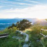 Parco Campo dei Fiori: 1,5 milioni per ripristino boschi e Tinella