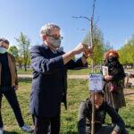 Torino. Messi a dimora gli alberi donati dalla Stratorino e da Nova Coop