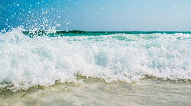 estate - Foto di Pexels da Pixabay
