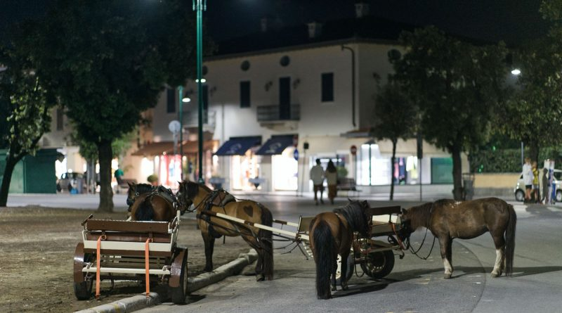 Cavallini Forte dei Marmi CinemaDaMare